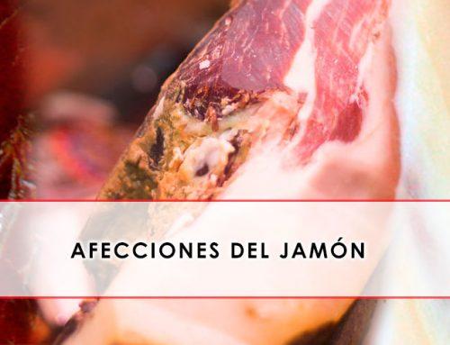 Afecciones del jamón, qué son y cómo localizarlas