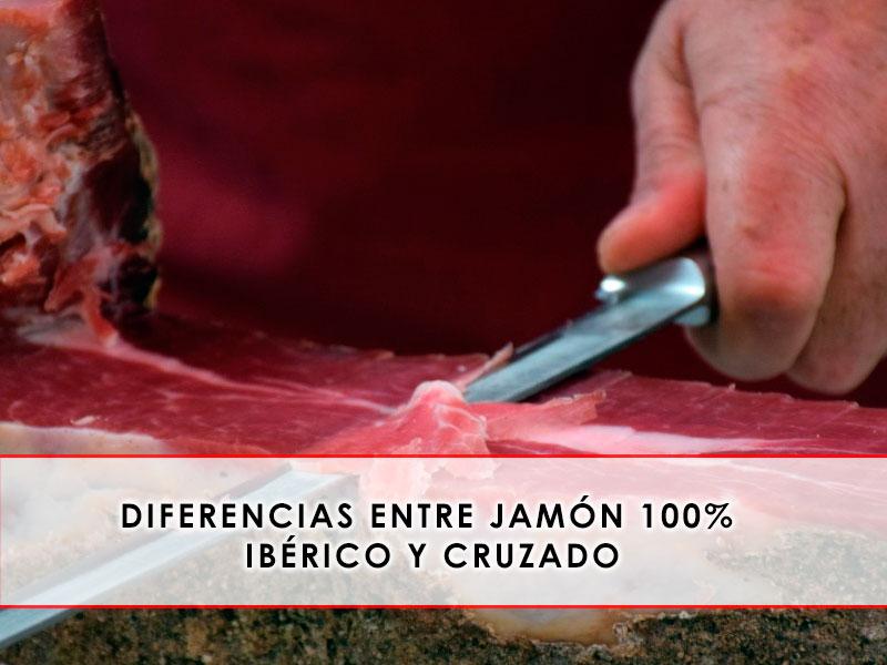 diferencias entre jamón 100% ibérico y cruzado